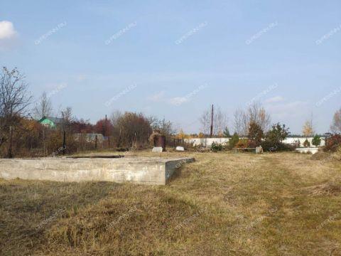 derevnya-gridenino-balahninskiy-municipalnyy-okrug фото