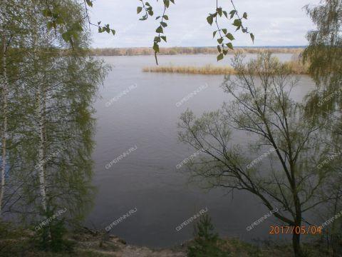 selo-kamenka-vorotynskiy-rayon фото