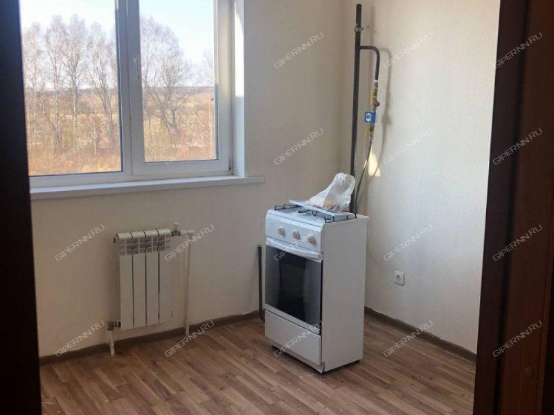 однокомнатная квартира на Сергея Малышева дом 23 деревня Берёзовка