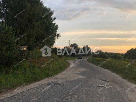 derevnya-maloe-sitnikovo-gorodskoy-okrug-bor фото