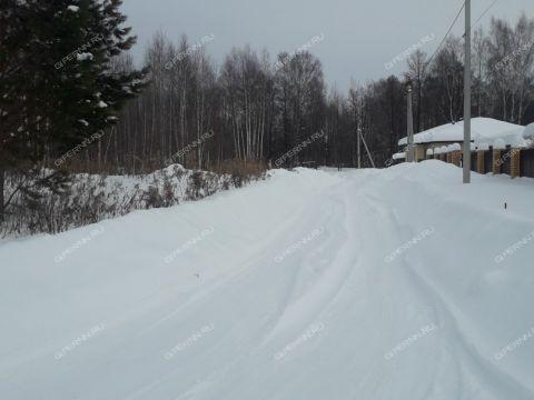 selo-redkino-gorodskoy-okrug-bor фото
